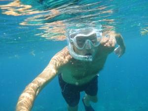 En av de mer fridsamma  varelserna i havet
