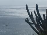 Peter Island - obs den lilla båten