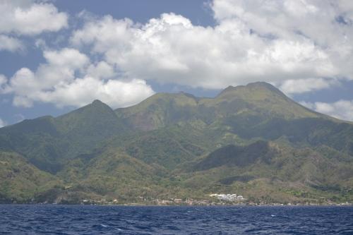 16 Dominica (1)