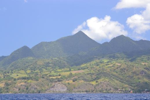 16 Dominica (2)