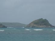 Carriacous sydsida
