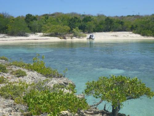 Greena Island (1)