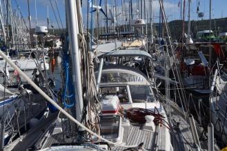 Tacoma helt omgärdad av båtar